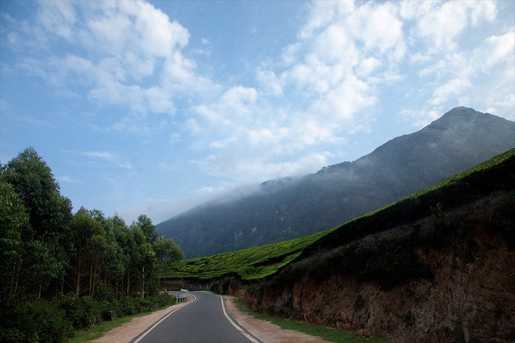 Coorg to Munnar