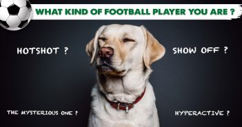 Kinds of Players in a Football Team