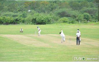 hamsa Cricket grounds