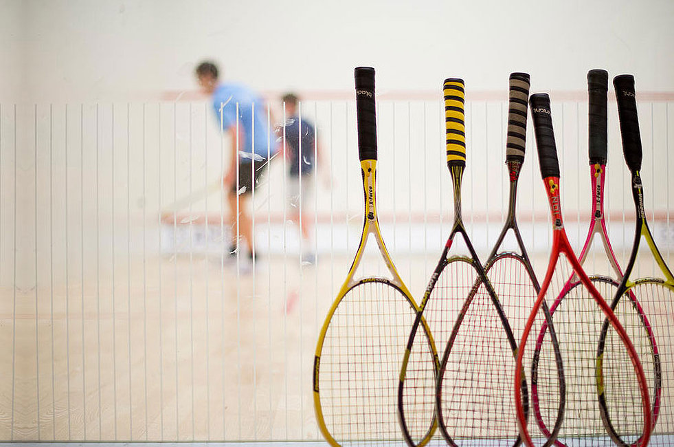 Image result for squash game