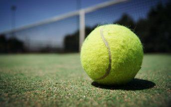 tennis ball hd