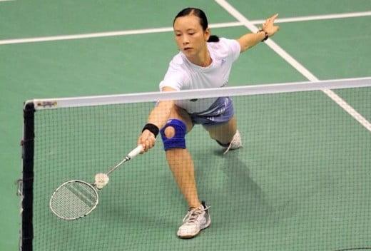 badminton net shot
