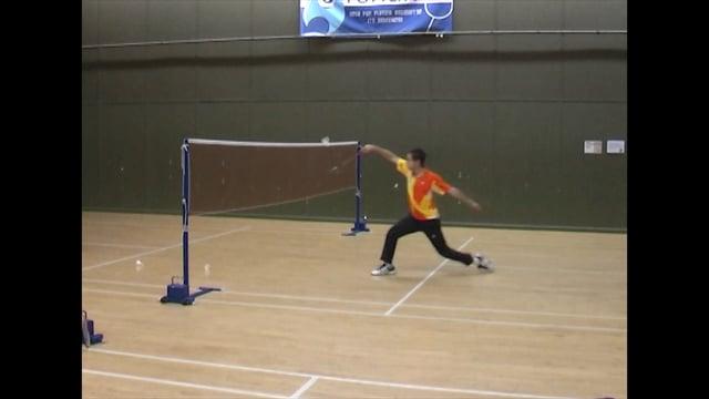 net shots badminton