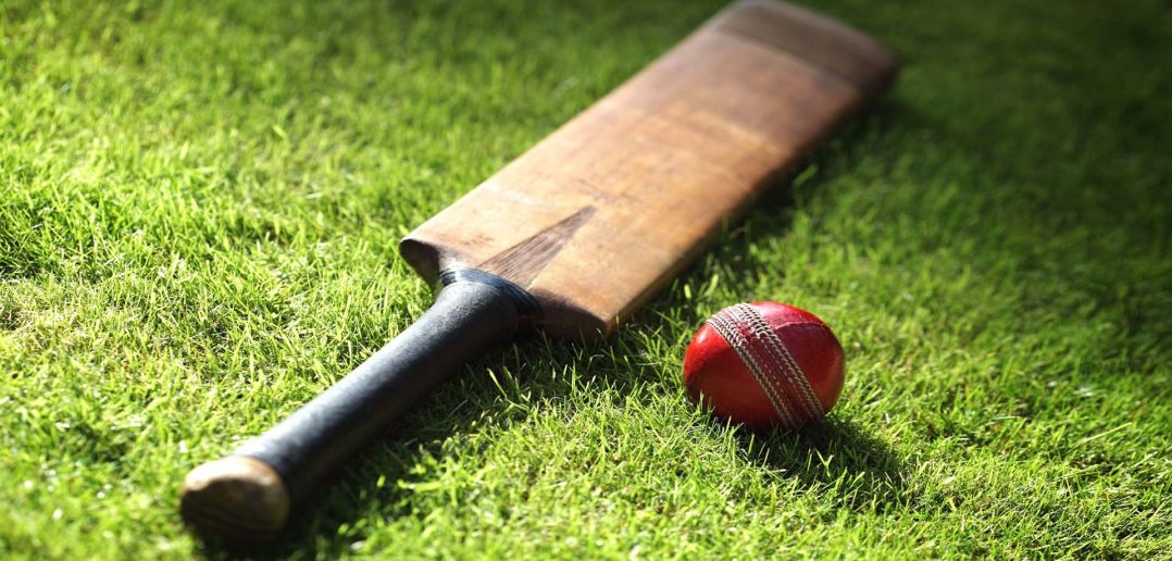 10 best cricket bats
