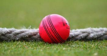 pink ball test cricket