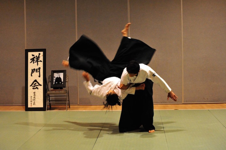 Aikido- Martial Art
