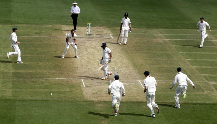 All You Should Know About Cricket Field Dimensions Playo