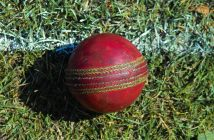 An used cricket ball