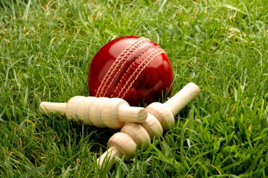 Cricket ball and stumps