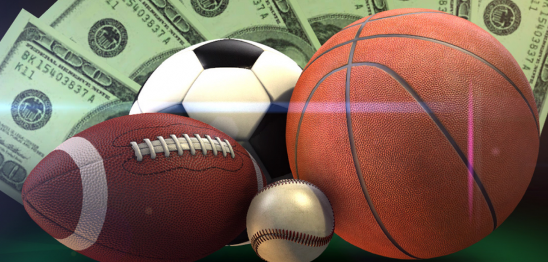 sports bettors lose